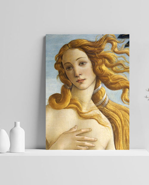 Quadro Afrodite 11